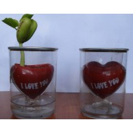 Sihirli Mesajlı Kalp ( Canım Annem Seni Seviyorum )