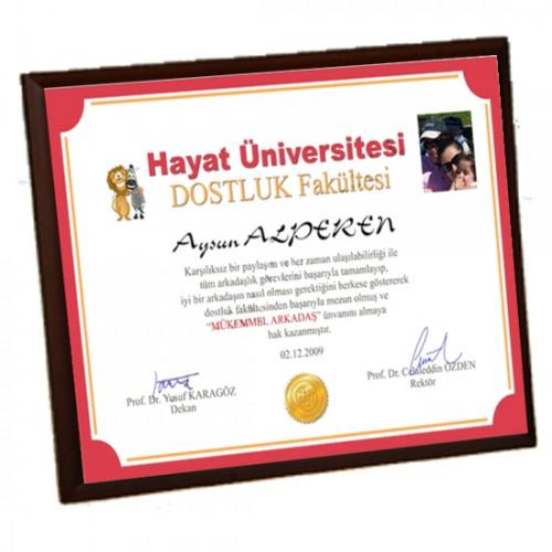 Mükemmel Arkadaş Diploması - Ön Yüzü Metal Ahşap Plaket